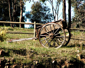 old horse cart: unwanted old horse cart left neglected on ridge of farming property