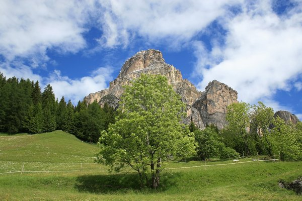 Dolomite countryside: Meadows and woodland among the Dolomite mountains, Italy.