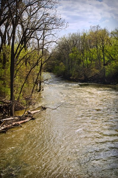 Root River: This photo of Root River was taken in early spring in Racine Wisconsin.