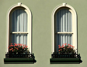 window box flowers