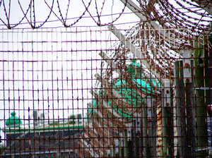 Prison Images From Robben Isla