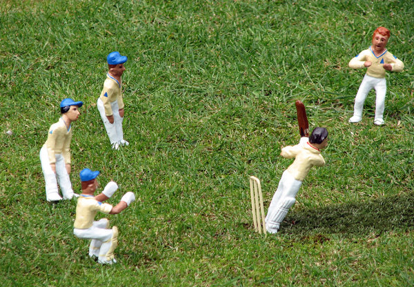 Cricket: A toy model cricket match