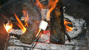 'mallow!: Roasting a marshmallow over a campfire in the backyard. Ah, summer!
