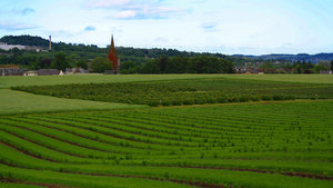 Fields: Fields with a church in background