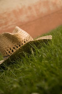 Strow Hat I: Strow hat in grass