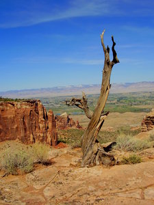 Colorado National Monument: Some shots of Colorado National Monument out in western CO. September 2010.