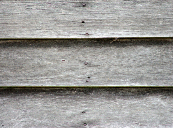 weathered grey boards: deteriorating unpainted weather board wall