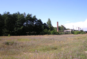 Factory meadow