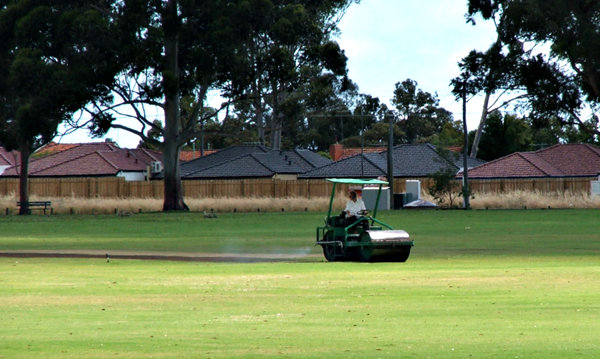 rolling out the pitch: cricket pitch being rolled and flattened
