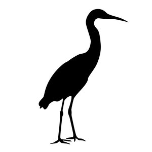 silhouette heron: Adobe Illustrator CS5