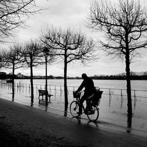 Flood: January flood of the rhine river in Bonn, Germany.