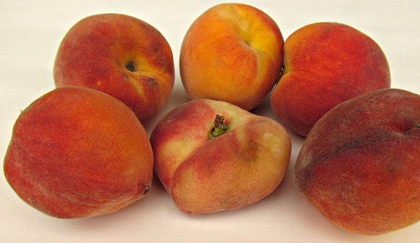 peaches: a variety of clingstone peaches including new flat donut peach