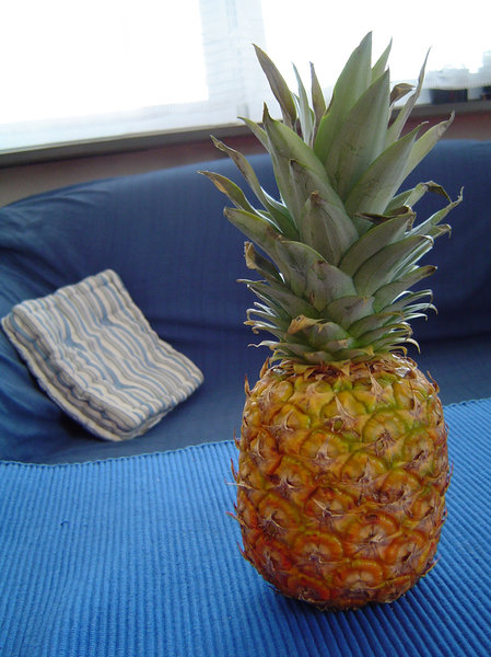 pineapple and couch