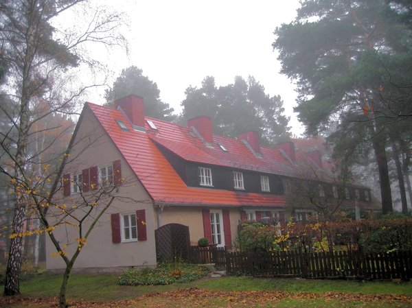 countrystyle homes in the mist