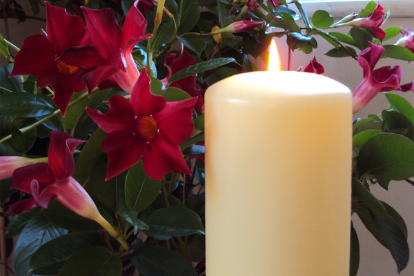 Christmas Candle: Christmas candle - white candle with red flowers