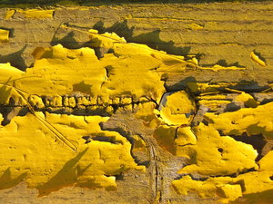 Yellow wooden texture