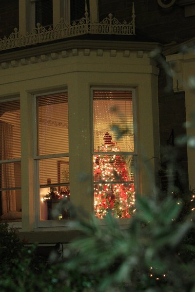 Outside at Christmas: View of a lit room (with Christmas tree) from outside