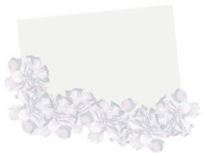 Floral Border Card 2: Plain card, tag or illustration with a floral border of hibiscus in pastel purples. Plenty of copyspace. Graphic and photo.