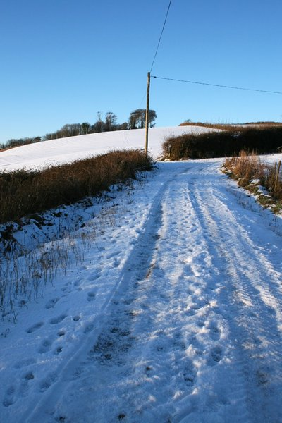 Snowy country lane 2