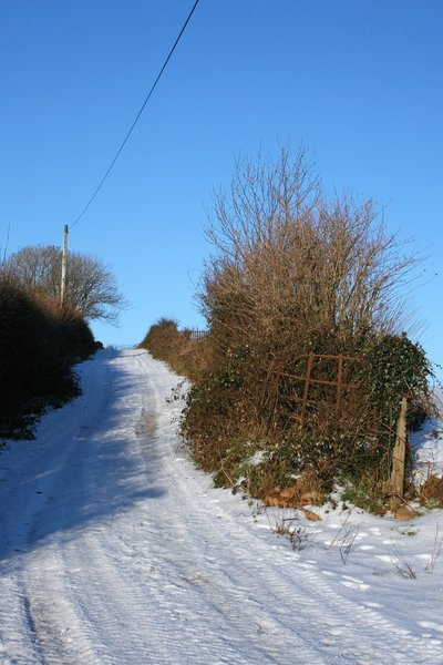 Snowy country lane 3