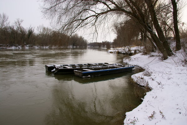 Winter at the Danube