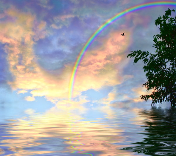Rainbow Skies over Water 2: Rainbow coloured clouds reflected in water, with a bird flying, a rainbow, and a tree to border. Would make a great background or illustration. Large file size.