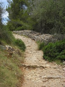 Pathway down hill: no description