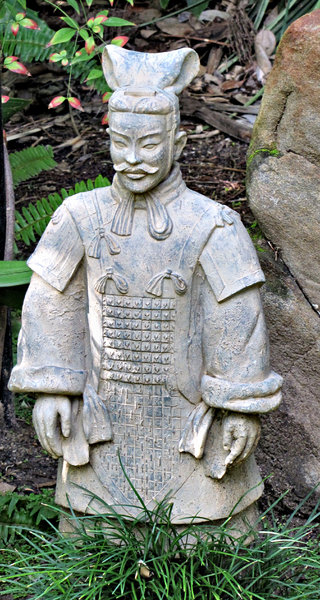 Chinese garden warrior