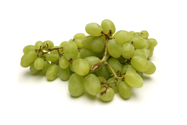 Grapes: Visit http://www.vierdrie.nl