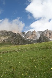 Mountain meadow: A meadow among the Dolomite mountains, Italy.