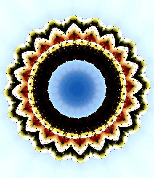 sky flower mandala: abstract backgrounds, textures, patterns, geometric patterns, kaleidoscopic patterns, circles, shapes and perspectives from altering and manipulating image