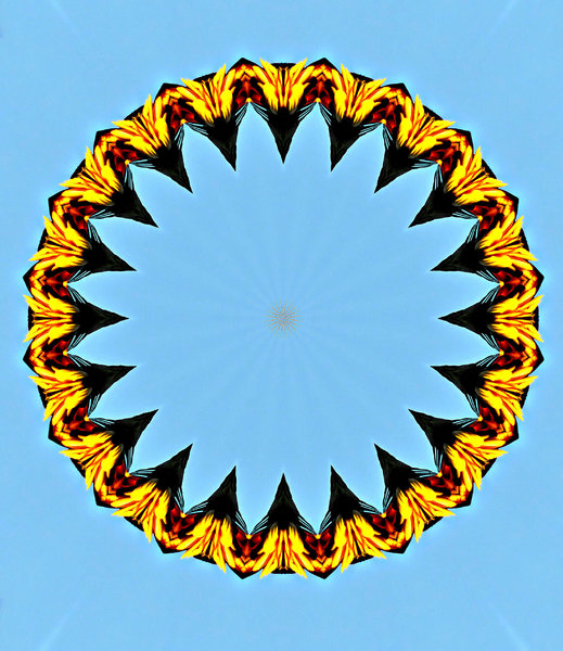 ring of black tooth feathery f: abstract backgrounds, textures, patterns, geometric patterns, kaleidoscopic patterns, circles, shapes and perspectives from altering and manipulating image