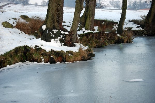 frozen river bank 1