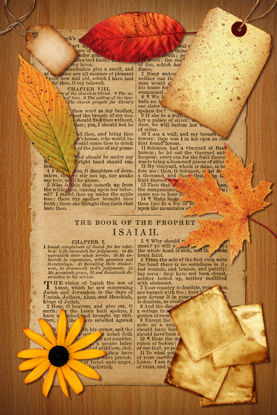 Bible Collage 4