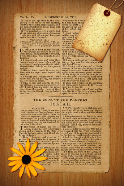 Bible Collage 2