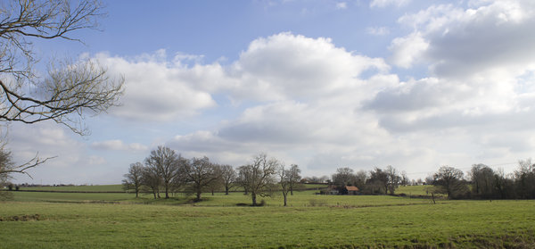 Sussex rural landscape