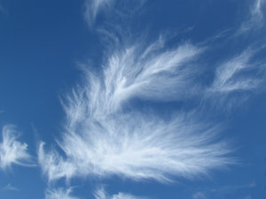 sky spirits8: fine light thin streaky cloud formations