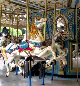 at the carousel2