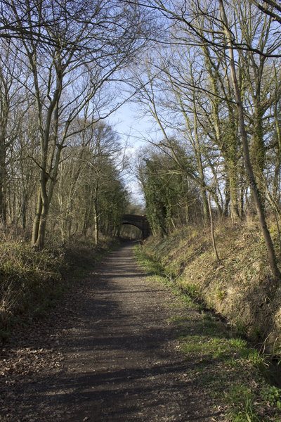 Cycle track, disused railway