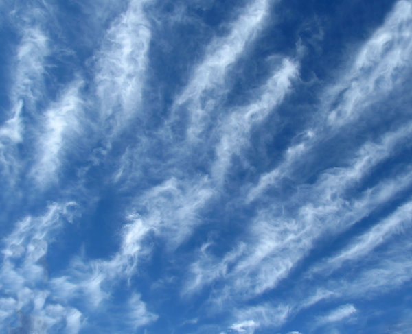 sky feathers6: fine light thin streaky cloud formations