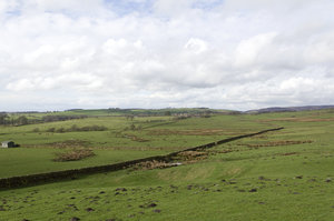 Northern fields: Fields bounded by drystone walls in northern England in early spring.