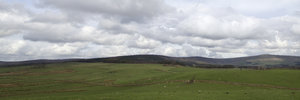 Drystone wall landscape: Farmland with drystone walls in northern England in early spring. Four image photomerge.