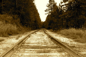 1880 Train Tracks: Train tracks from the 1880 Train from Hill City to Keystone, SD