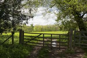 Field gate in spring
