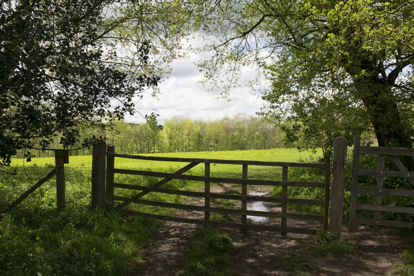 Field gate in spring: Gate to a field in rural England in spring.