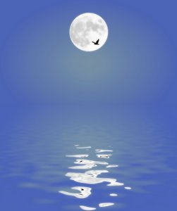 Moon Reflected in Water 1
