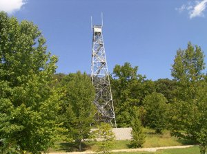 Eyes in the Sky: This fire lookout tower helps to keep a watchful eye on the forest area below for wildfires.