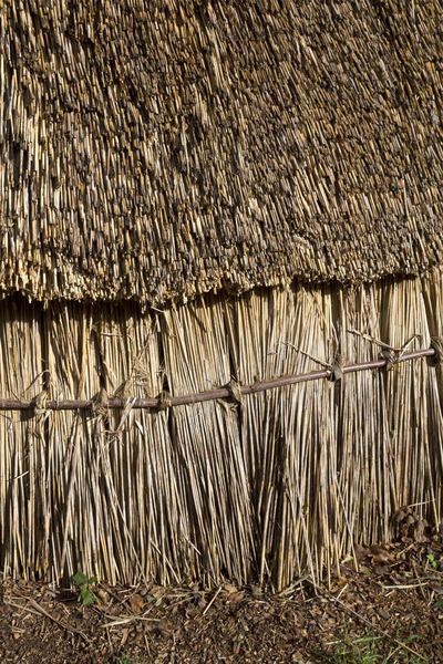 Straw hovel: Detail of reconstruction of an ancient wood and straw hovel in West Sussex, England.