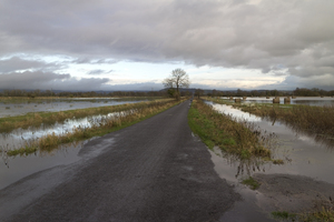 Flooded landscape: A road between flooded fields in the Somerset Levels, England.