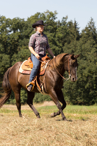 Outdoor Ride - Young Woman wit: Outdoor Ride - Young Woman with brown Quarter Horse riding in Field - Lope